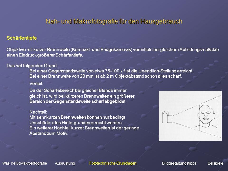 Nah- und Makrofotografie für den Hausgebrauch Was heißt Makrofotografie Ausrüstung Fototechnische Grundlagen BildgestaltungstippsBeispiele Was heißt M