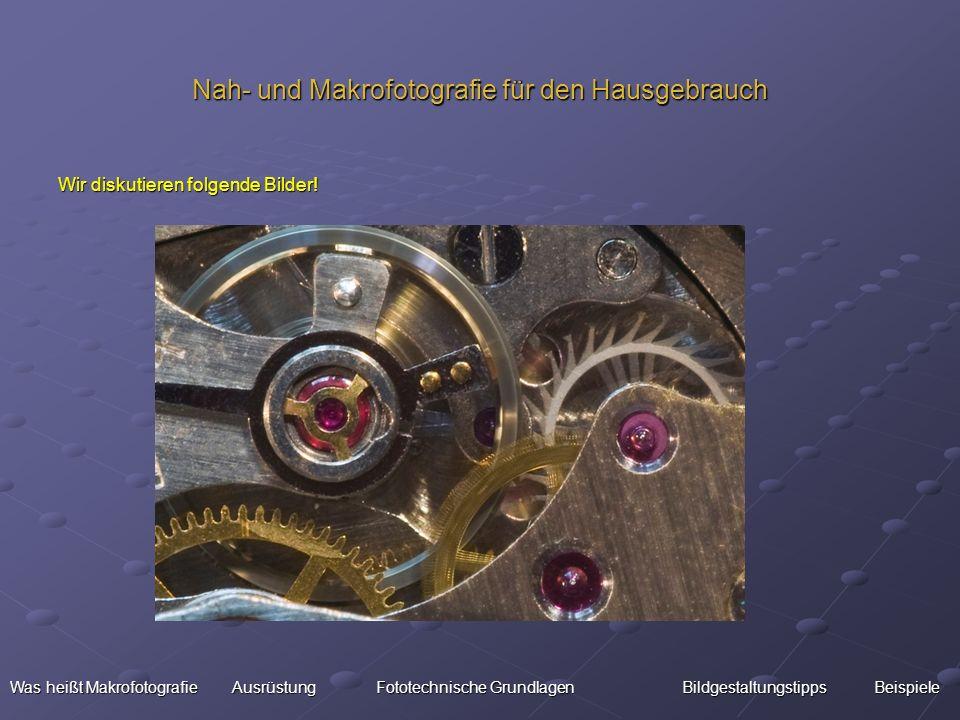 Nah- und Makrofotografie für den Hausgebrauch Wir diskutieren folgende Bilder! Was heißt Makrofotografie Ausrüstung Fototechnische Grundlagen Bildgest