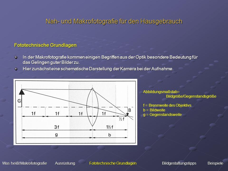 Nah- und Makrofotografie für den Hausgebrauch Fototechnische Grundlagen In der Makrofotografie kommen einigen Begriffen aus der Optik besondere Bedeut