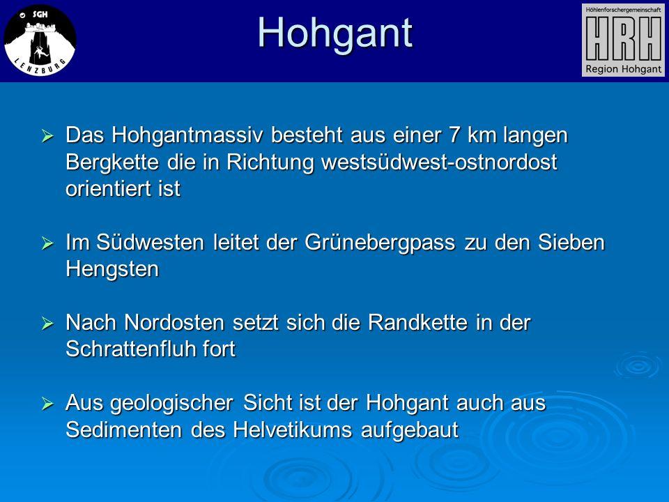 Das Hohgantmassiv besteht aus einer 7 km langen Bergkette die in Richtung westsüdwest-ostnordost orientiert ist Das Hohgantmassiv besteht aus einer 7