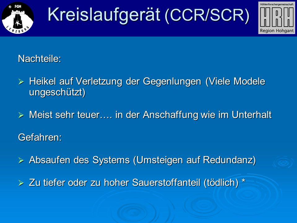 Nachteile: Heikel auf Verletzung der Gegenlungen (Viele Modele ungeschützt) Heikel auf Verletzung der Gegenlungen (Viele Modele ungeschützt) Meist seh
