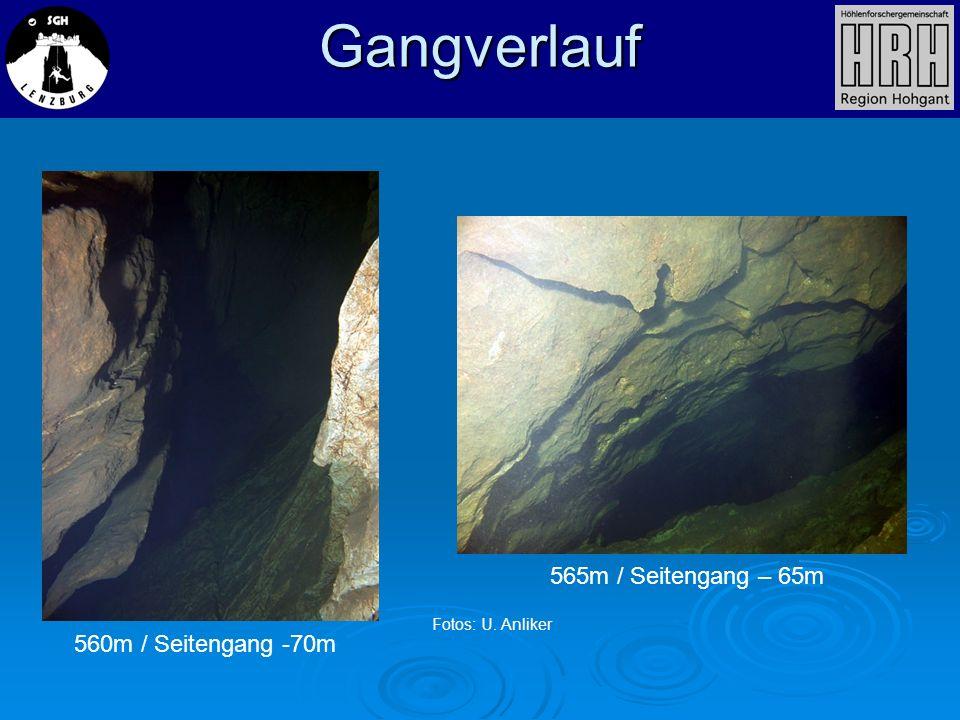 560m / Seitengang -70m 565m / Seitengang – 65m Gangverlauf Fotos: U. Anliker