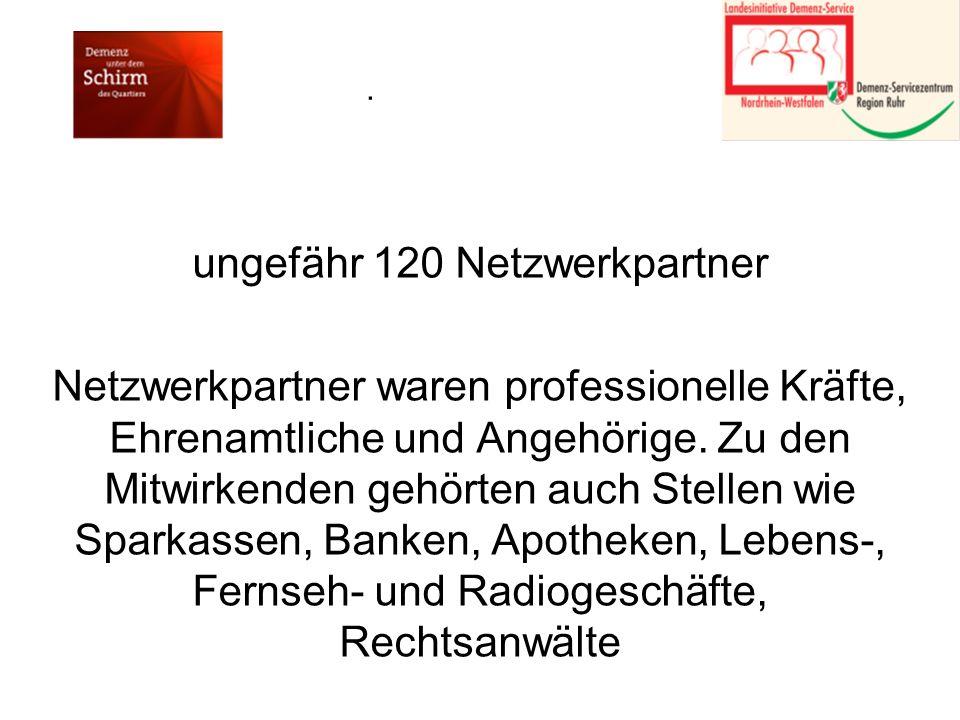 ungefähr 120 Netzwerkpartner Netzwerkpartner waren professionelle Kräfte, Ehrenamtliche und Angehörige.