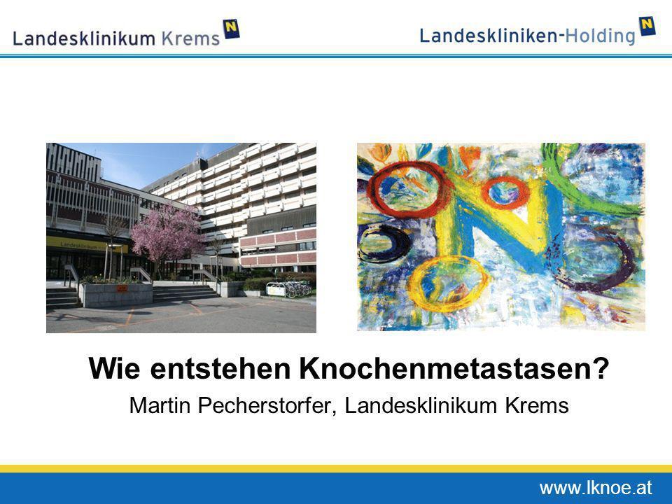 www.lknoe.at Wie entstehen Knochenmetastasen? Martin Pecherstorfer, Landesklinikum Krems