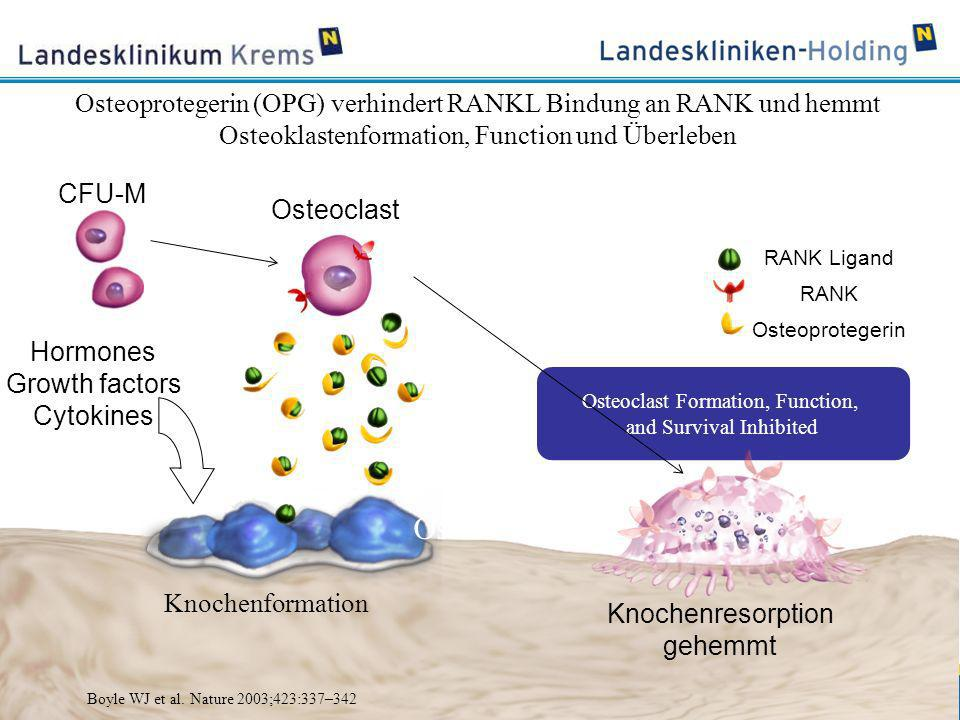 www.lknoe.at Hormones Growth factors Cytokines Knochenformation Knochenresorption gehemmt Osteoclast Formation, Function, and Survival Inhibited CFU-M
