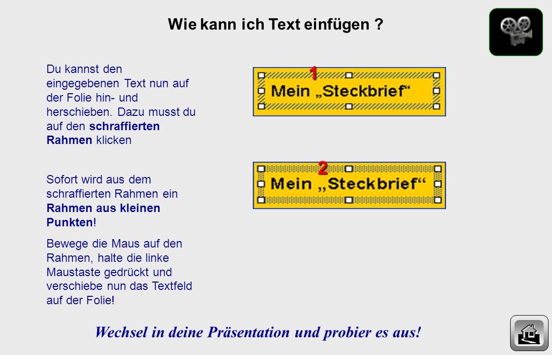 Wie kann ich Text einfügen ? In der Zeichnen-Menuleiste (unten) findest du das Zeichen Textfeld. Klicke einmal darauf und bewege die Maus auf die Foli