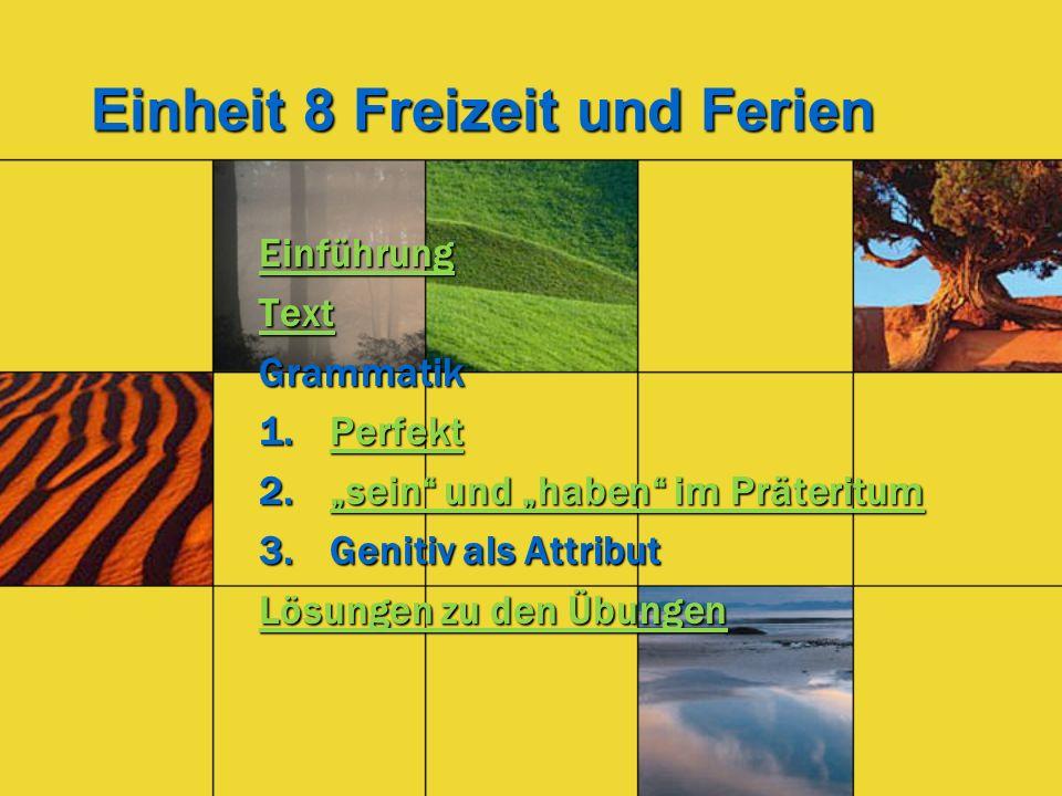 Einheit 8 Freizeit und Ferien Einführung Text Grammatik 1.Perfekt Perfekt 2.sein und haben im Präteritum sein und haben im Präteritumsein und haben im