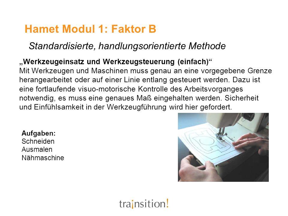 Hamet Modul 1: Faktor B Standardisierte, handlungsorientierte Methode Werkzeugeinsatz und Werkzeugsteuerung (einfach) Mit Werkzeugen und Maschinen mus