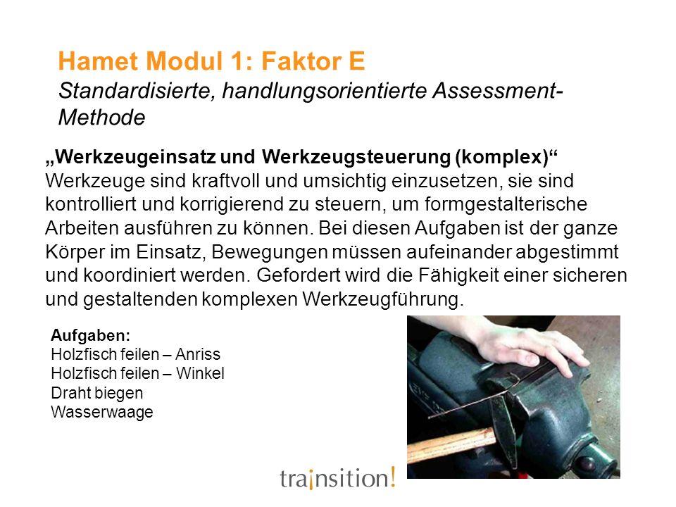 Hamet Modul 1: Faktor E Standardisierte, handlungsorientierte Assessment- Methode Werkzeugeinsatz und Werkzeugsteuerung (komplex) Werkzeuge sind kraft