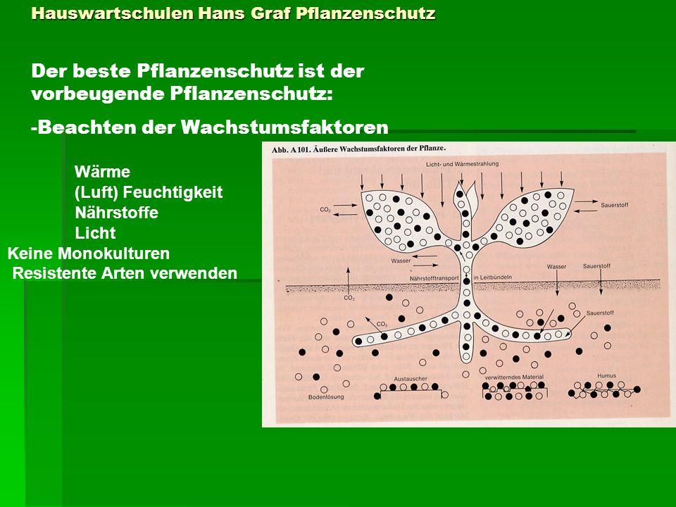 Hauswartschulen Hans Graf Pflanzenschutz Der beste Pflanzenschutz ist der vorbeugende Pflanzenschutz: -Beachten der Wachstumsfaktoren Wärme (Luft) Feu