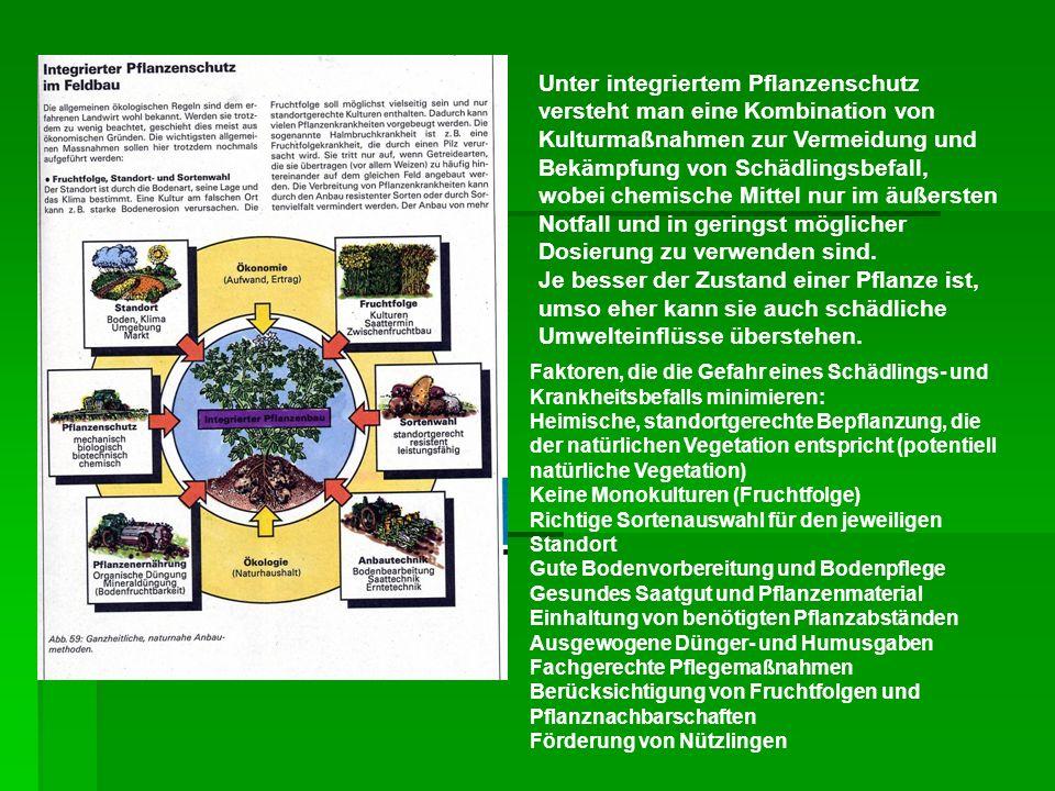 Unter integriertem Pflanzenschutz versteht man eine Kombination von Kulturmaßnahmen zur Vermeidung und Bekämpfung von Schädlingsbefall, wobei chemisch
