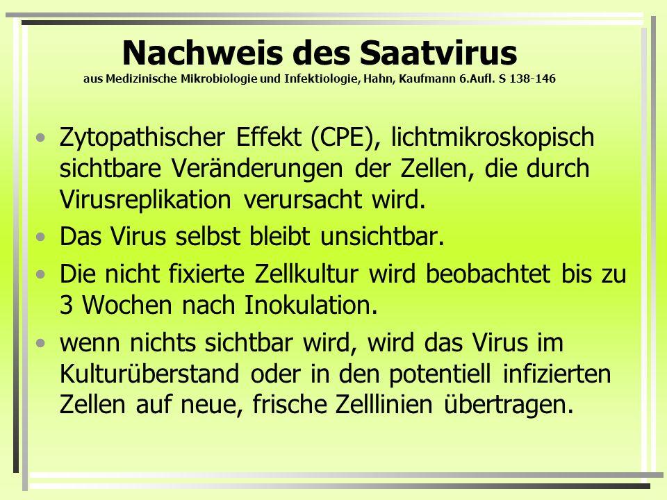 Nachweis des Saatvirus aus Medizinische Mikrobiologie und Infektiologie, Hahn, Kaufmann 6.Aufl. S 138-146 Zytopathischer Effekt (CPE), lichtmikroskopi