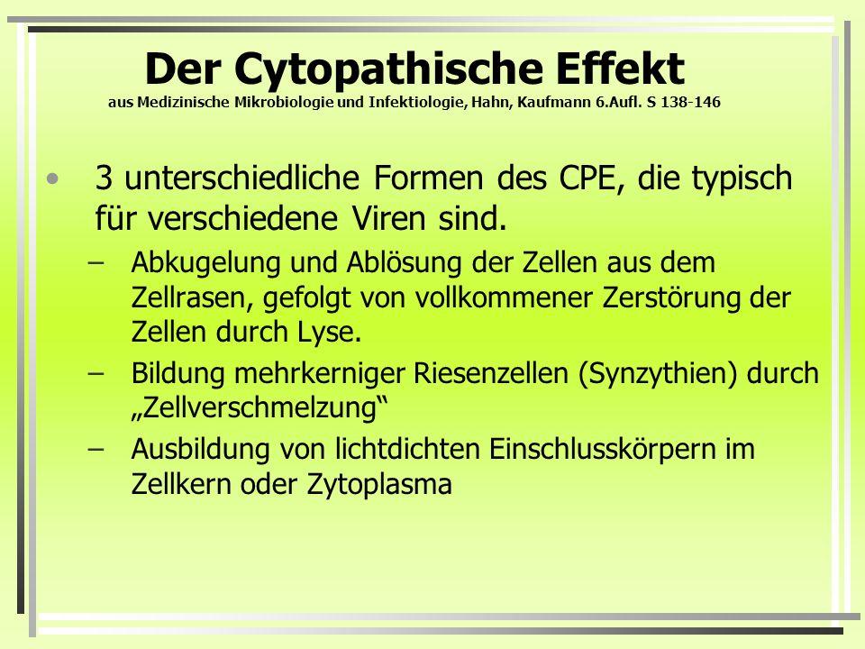 Der Cytopathische Effekt aus Medizinische Mikrobiologie und Infektiologie, Hahn, Kaufmann 6.Aufl. S 138-146 3 unterschiedliche Formen des CPE, die typ