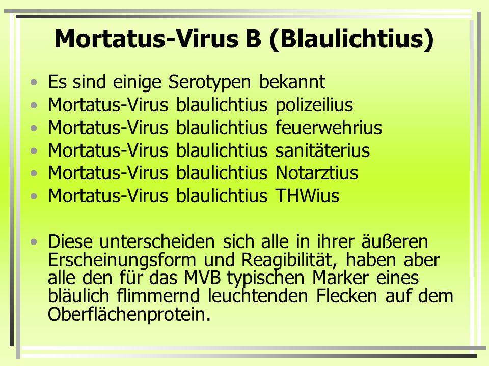 Mortatus-Virus B (Blaulichtius) Es sind einige Serotypen bekannt Mortatus-Virus blaulichtius polizeilius Mortatus-Virus blaulichtius feuerwehrius Mort