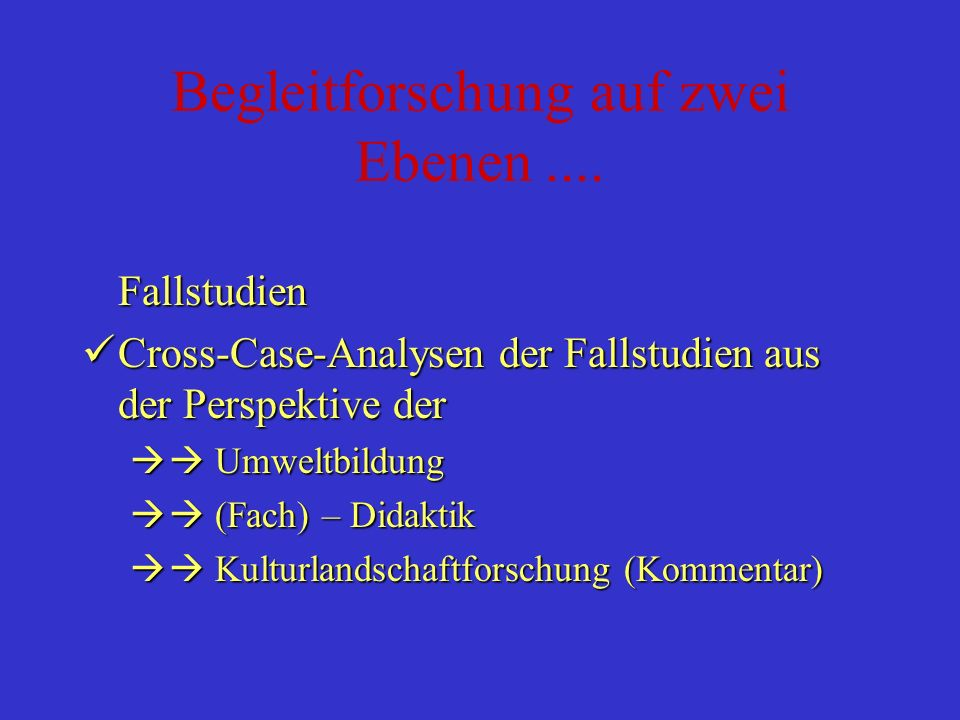 Begleitforschung auf zwei Ebenen.... Fallstudien Aktionsforschung der fünf Teams Fallstudien Cross-Case-Analysen der Fallstudien aus der Perspektive d