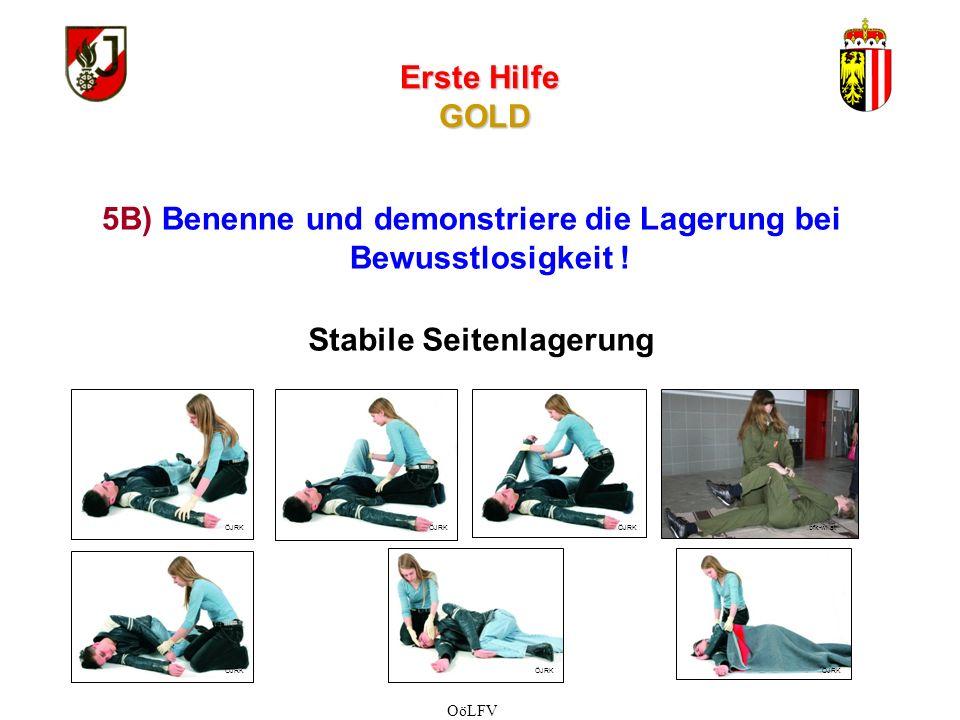Erste Hilfe GOLD 1.