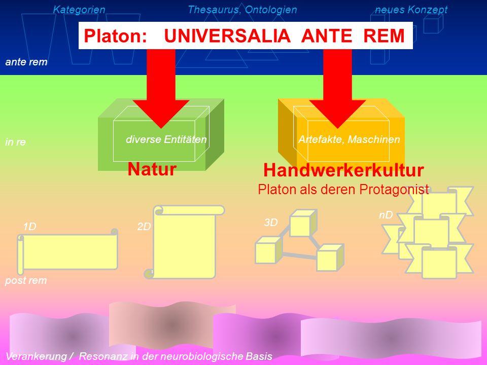KategorienThesaurus, Ontologienneues Konzept Verankerung / Resonanz in der neurobiologische Basis ante rem in re post rem Artefakte, Maschinendiverse Entitäten 1D2D 3D nD Aristoteles: UNIVERSALIA IN RE interne Struktur und Funktionalität