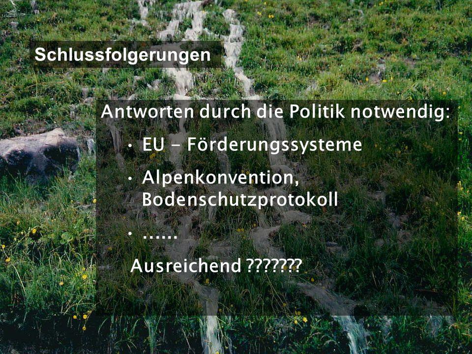 INSTITUT FÜR NATURGEFAHREN UND WALDGRENZREGIONEN B F W B F W Abteilung Gebietswasserhaushalt Schlussfolgerungen Antworten durch die Politik notwendig: EU - Förderungssysteme Alpenkonvention, Bodenschutzprotokoll......