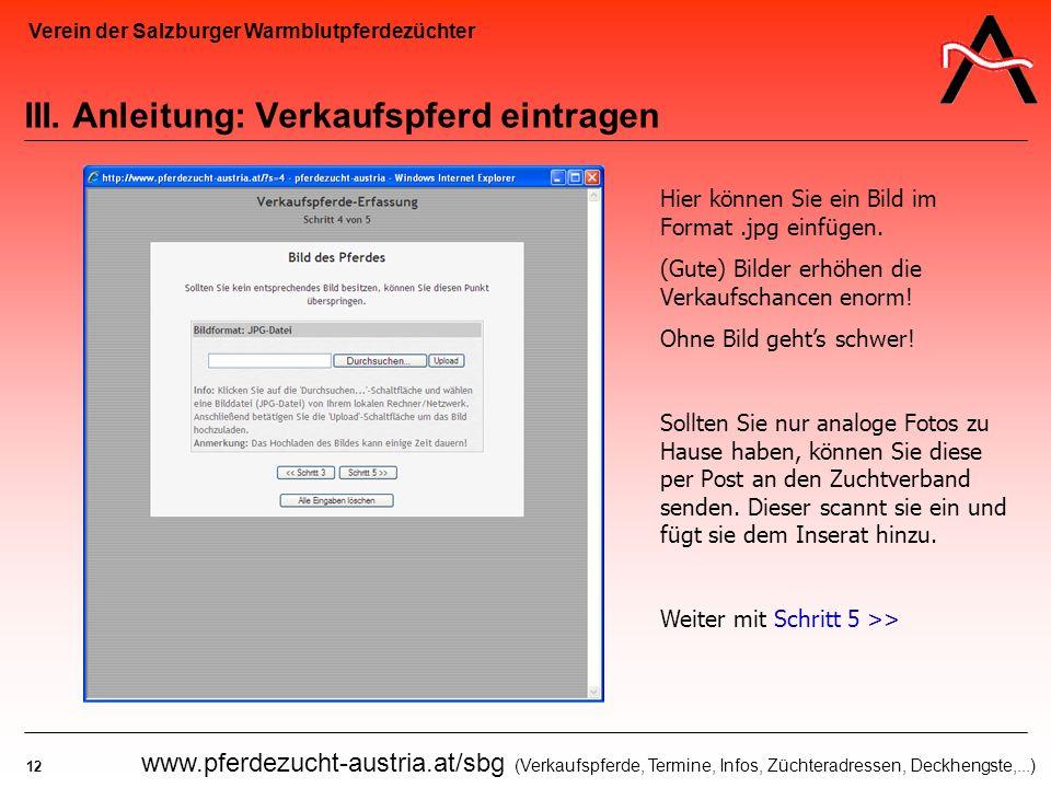 Verein der Salzburger Warmblutpferdezüchter 12 www.pferdezucht-austria.at/sbg (Verkaufspferde, Termine, Infos, Züchteradressen, Deckhengste,...) III.