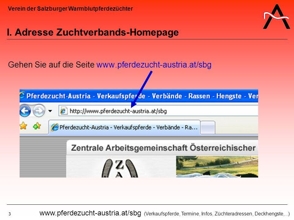 Verein der Salzburger Warmblutpferdezüchter 3 www.pferdezucht-austria.at/sbg (Verkaufspferde, Termine, Infos, Züchteradressen, Deckhengste,...) I. Adr
