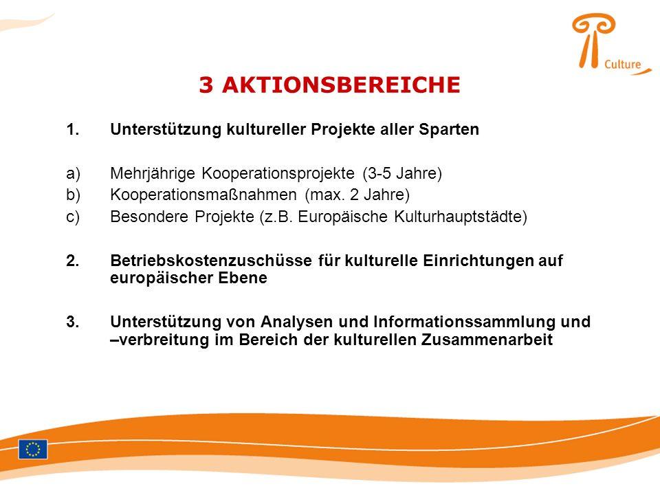 3 AKTIONSBEREICHE 1.Unterstützung kultureller Projekte aller Sparten a)Mehrjährige Kooperationsprojekte (3-5 Jahre) b)Kooperationsmaßnahmen (max. 2 Ja