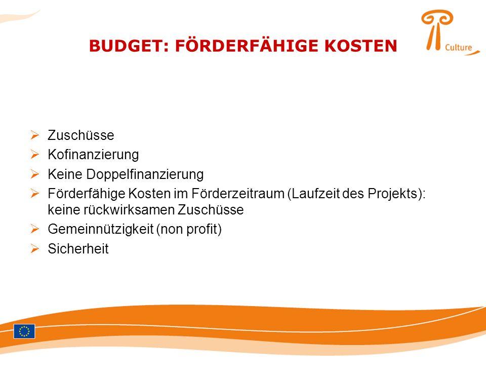 BUDGET: FÖRDERFÄHIGE KOSTEN Zuschüsse Kofinanzierung Keine Doppelfinanzierung Förderfähige Kosten im Förderzeitraum (Laufzeit des Projekts): keine rüc