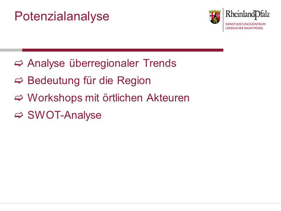 Analyse überregionaler Trends Bedeutung für die Region Workshops mit örtlichen Akteuren SWOT-Analyse Potenzialanalyse