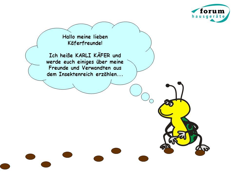 Hallo meine lieben Käferfreunde! Ich heiße KARLI KÄFER und werde euch einiges über meine Freunde und Verwandten aus dem Insektenreich erzählen...