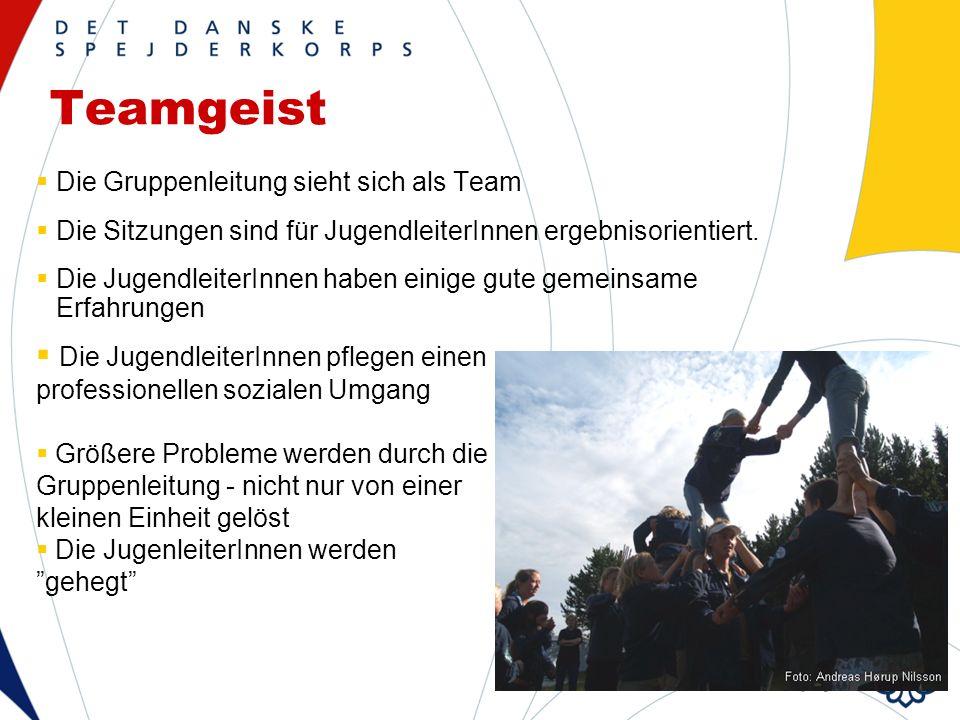 Teamgeist Die Gruppenleitung sieht sich als Team Die Sitzungen sind für JugendleiterInnen ergebnisorientiert.