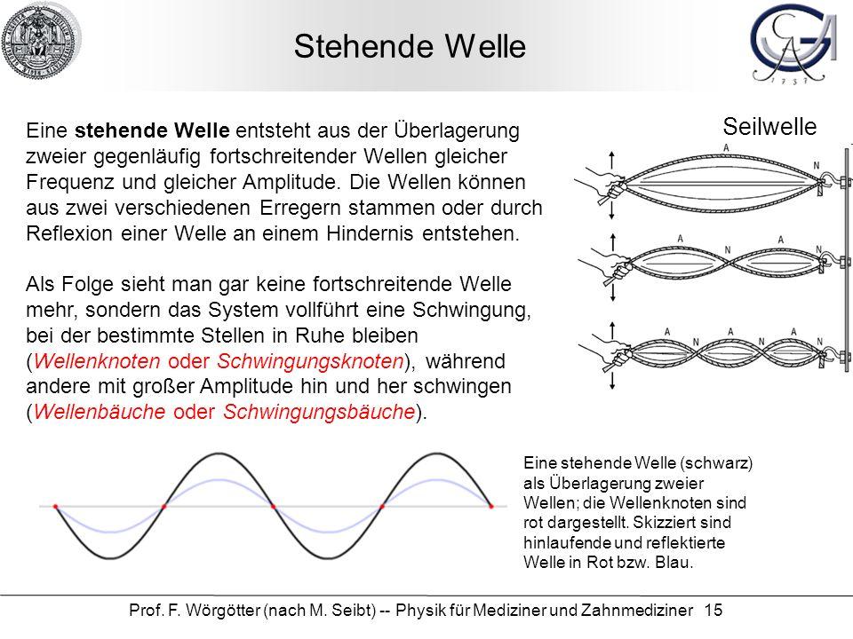 Prof. F. Wörgötter (nach M. Seibt) -- Physik für Mediziner und Zahnmediziner 15 Stehende Welle Eine stehende Welle (schwarz) als Überlagerung zweier W