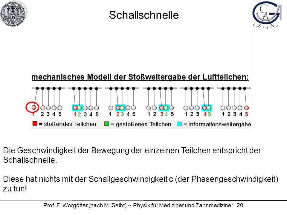 Prof. F. Wörgötter (nach M. Seibt) -- Physik für Mediziner und Zahnmediziner 20 ein einfaches Bild... Die Geschwindigkeit der Bewegung der einzelnen T