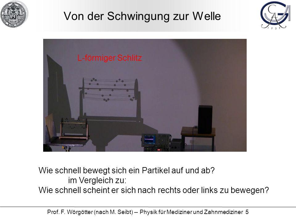 Prof. F. Wörgötter (nach M. Seibt) -- Physik für Mediziner und Zahnmediziner 5 Von der Schwingung zur Welle Wie schnell bewegt sich ein Partikel auf u