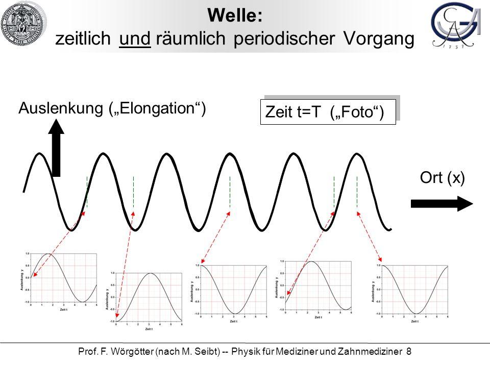 Prof. F. Wörgötter (nach M. Seibt) -- Physik für Mediziner und Zahnmediziner 8 Welle: zeitlich und räumlich periodischer Vorgang Zeit t=T (Foto) Ausle