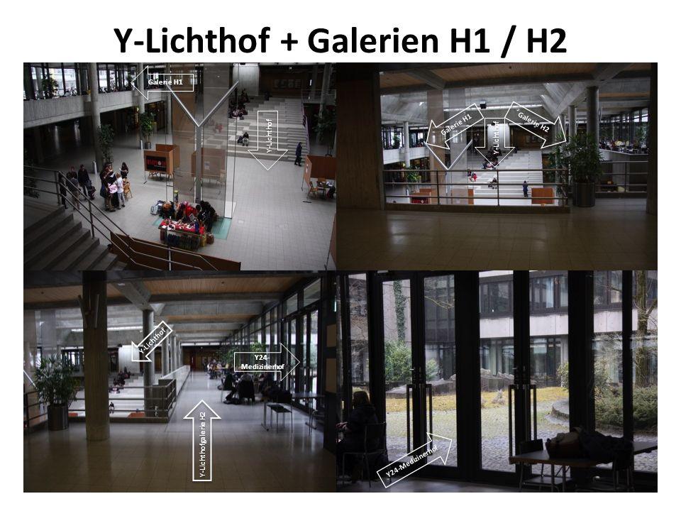 Y-Lichthof + Galerien H1 / H2 Y-Lichthof Galerie H1 Galerie H2 Galerie H1 Y-Lichthof Y-Lichthofgalerie H2 Y24-Medizinerhof