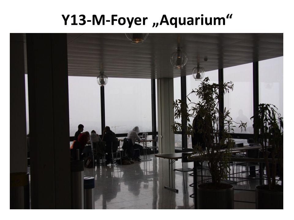 Y13-M-Foyer Aquarium