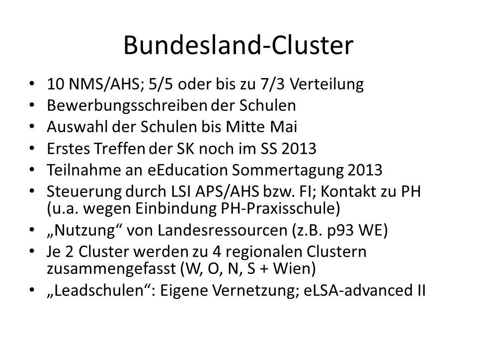 Bundesland-Cluster 10 NMS/AHS; 5/5 oder bis zu 7/3 Verteilung Bewerbungsschreiben der Schulen Auswahl der Schulen bis Mitte Mai Erstes Treffen der SK