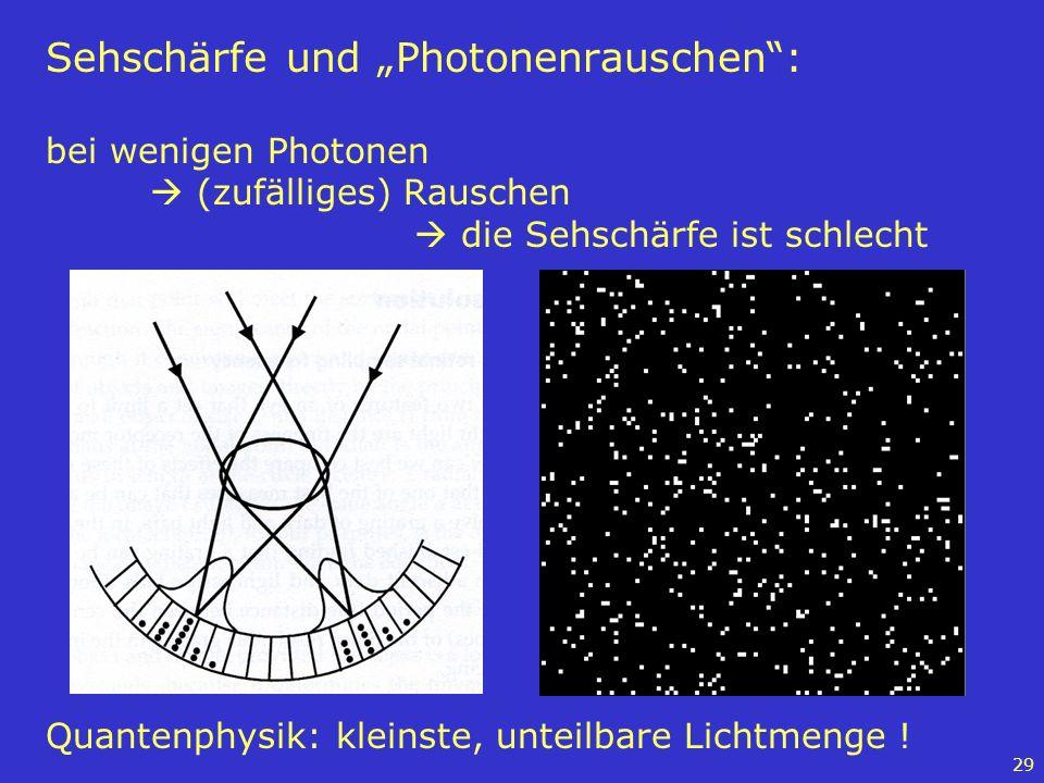 29 Sehschärfe und Photonenrauschen: bei wenigen Photonen (zufälliges) Rauschen die Sehschärfe ist schlecht Quantenphysik: kleinste, unteilbare Lichtme