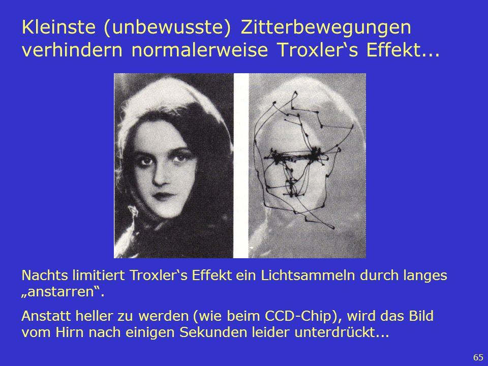 65 Kleinste (unbewusste) Zitterbewegungen verhindern normalerweise Troxlers Effekt... Nachts limitiert Troxlers Effekt ein Lichtsammeln durch langes a