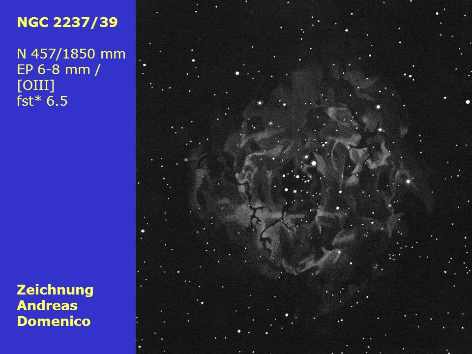 79 NGC 2237/39 N 457/1850 mm EP 6-8 mm / [OIII] fst* 6.5 Zeichnung Andreas Domenico