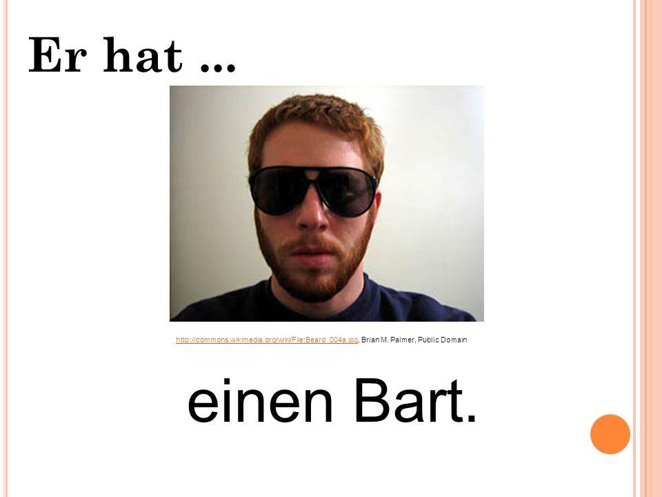 Er hat... einen Schnurrbart und einen Ziegebart. einen Schnurrbart. Berthold Welte, http://commons.wikimedia.org/wiki/File:BertholdWelte.jpg, GNU Free