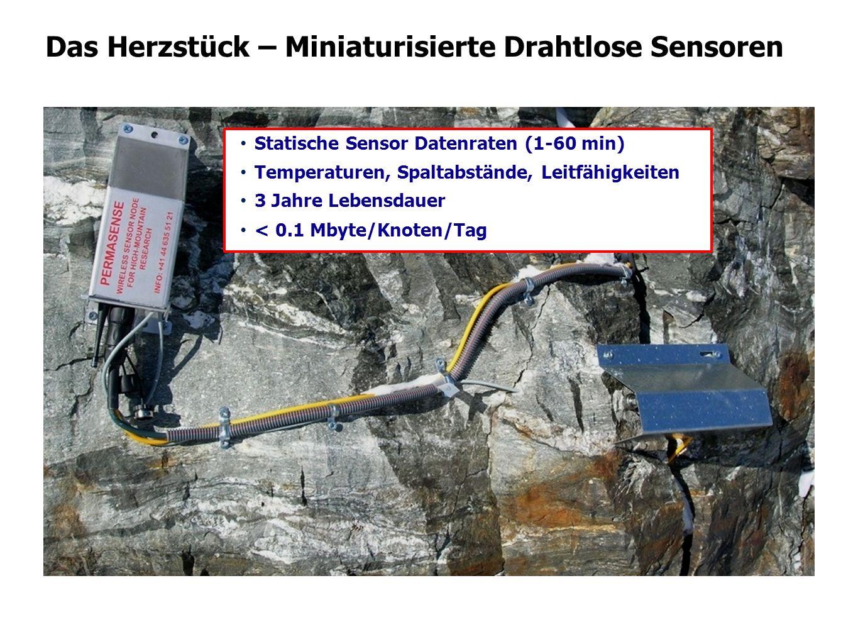 Das Herzstück – Miniaturisierte Drahtlose Sensoren Statische Sensor Datenraten (1-60 min) Temperaturen, Spaltabstände, Leitfähigkeiten 3 Jahre Lebensd