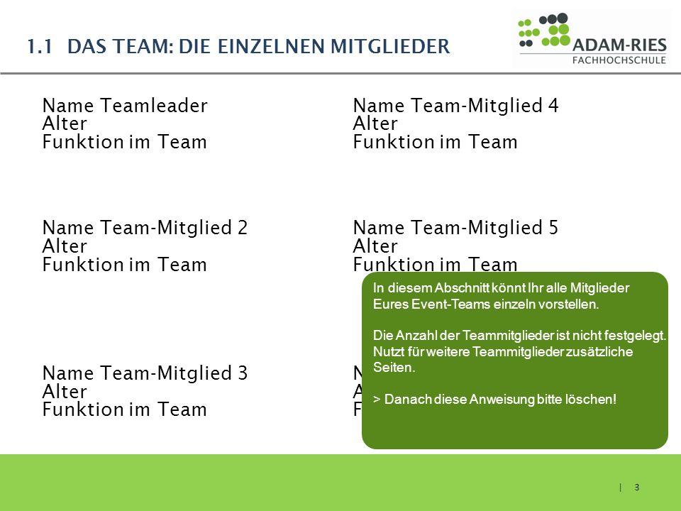 1.1 DAS TEAM: DIE EINZELNEN MITGLIEDER Name Teamleader Alter Funktion im Team Name Team-Mitglied 2 Alter Funktion im Team Name Team-Mitglied 3 Alter F