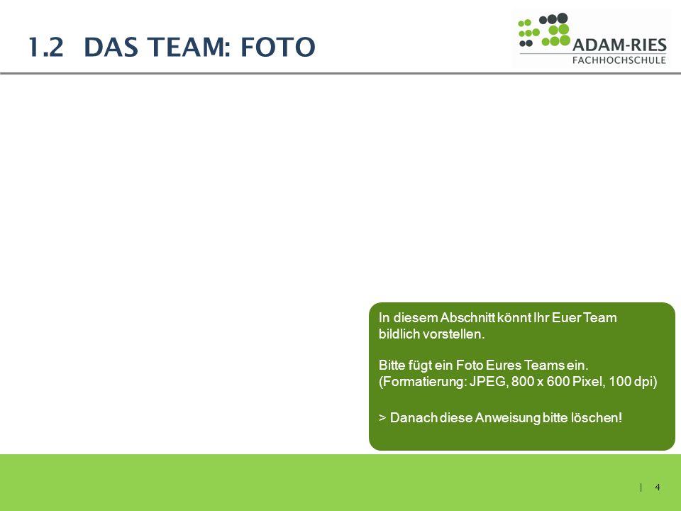 1.2 DAS TEAM: FOTO | 4 In diesem Abschnitt könnt Ihr Euer Team bildlich vorstellen. Bitte fügt ein Foto Eures Teams ein. (Formatierung: JPEG, 800 x 60
