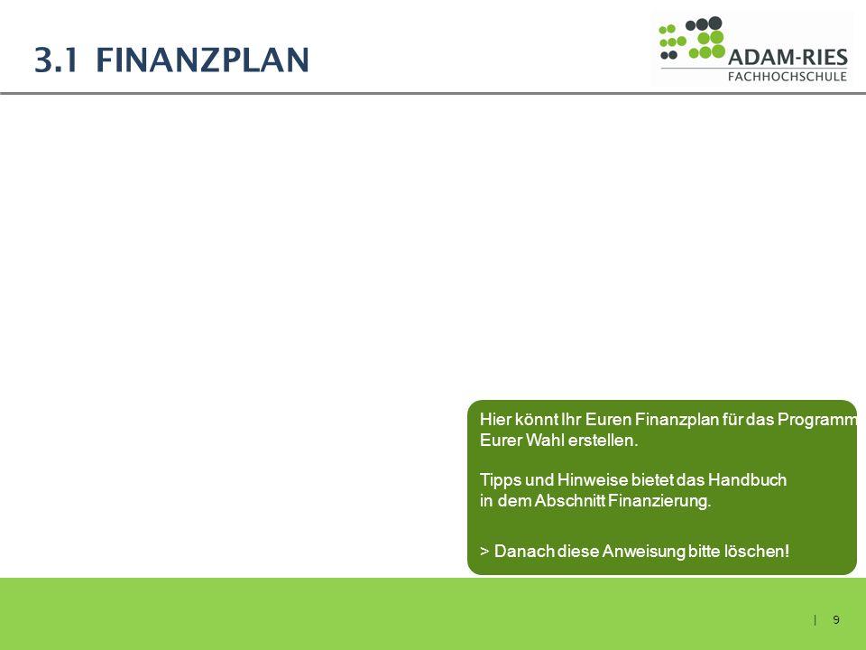 3.1 FINANZPLAN | 9 Hier könnt Ihr Euren Finanzplan für das Programm Eurer Wahl erstellen. Tipps und Hinweise bietet das Handbuch in dem Abschnitt Fina
