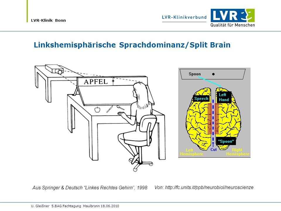 LVR-Klinik Bonn U. Gleißner 5.BAG Fachtagung Maulbronn 18.06.2010 Aus Springer & Deutsch Linkes Rechtes Gehirn, 1998 Von: http://fc.units.it/ppb/neuro