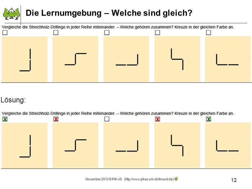 12 November 2013 © PIK AS (http://www.pikas.uni-dortmund.de/) Die Lernumgebung – Welche sind gleich? Lösung:
