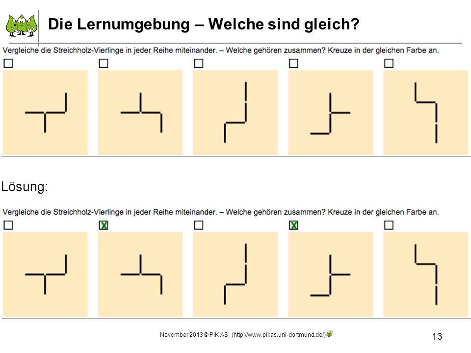 13 November 2013 © PIK AS (http://www.pikas.uni-dortmund.de/) Die Lernumgebung – Welche sind gleich? Lösung: