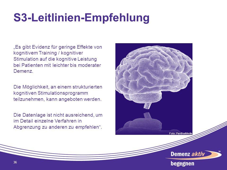 S3-Leitlinien-Empfehlung Es gibt Evidenz für geringe Effekte von kognitivem Training / kognitiver Stimulation auf die kognitive Leistung bei Patienten