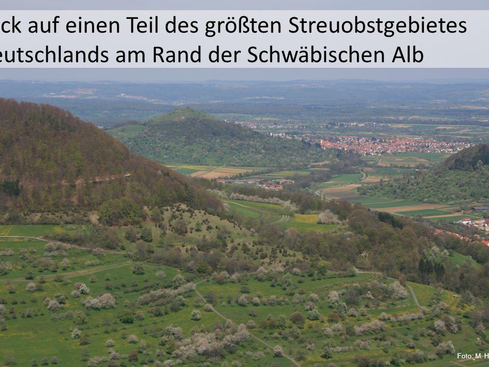 Blick auf einen Teil des größten Streuobstgebietes Deutschlands am Rand der Schwäbischen Alb Foto: M. Hägele