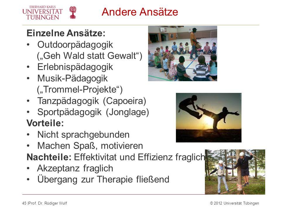 45  Prof. Dr. Rüdiger Wulf© 2012 Universität Tübingen Andere Ansätze Einzelne Ansätze: Outdoorpädagogik (Geh Wald statt Gewalt) Erlebnispädagogik Musi